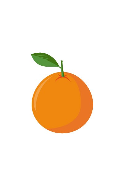 Orange Fruit Vector The gallery for -->...
