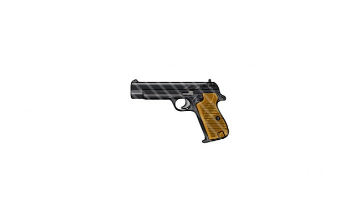 gun-vector-graphics-pack