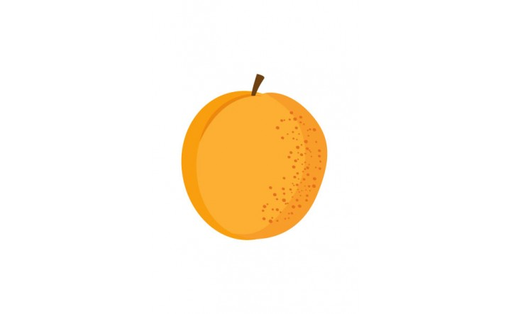 Fruits Vector Pack | Apricot Vector Image | VectorVice