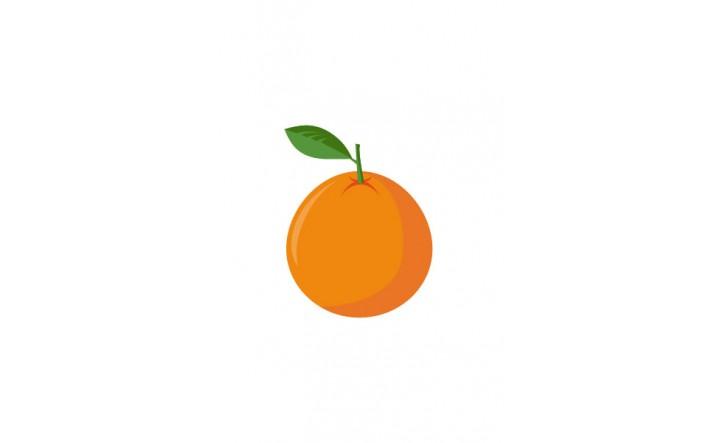 Fruits Vector Pack   Orange Vector Image   VectorVice