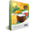 Summer Cocktails Vector Pack | Vector Graphics | VectorVice