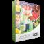 Summer Snacks Vector Pack | Vector Graphics | VectorVice