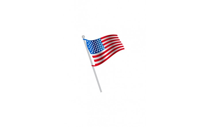 4th July Vector Pack | Flag Vector Image | VectorVice