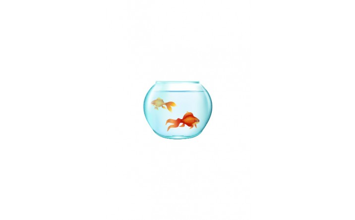 Gold Fish Vector Pack   Vector Elements   VectorVice