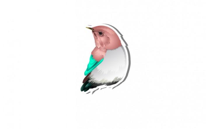 Spring Vector Pack | Bird Vector Image | VectorVice