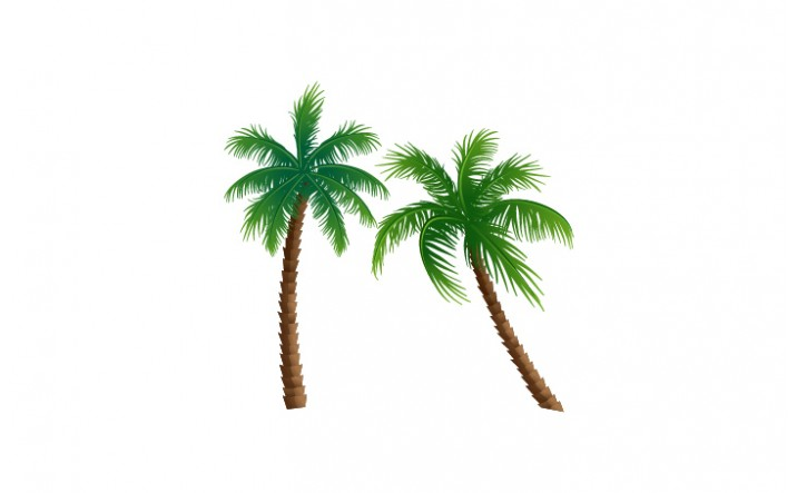 Summer Cocktails Vector Pack   Palm Tree Vector Image  VectorVice