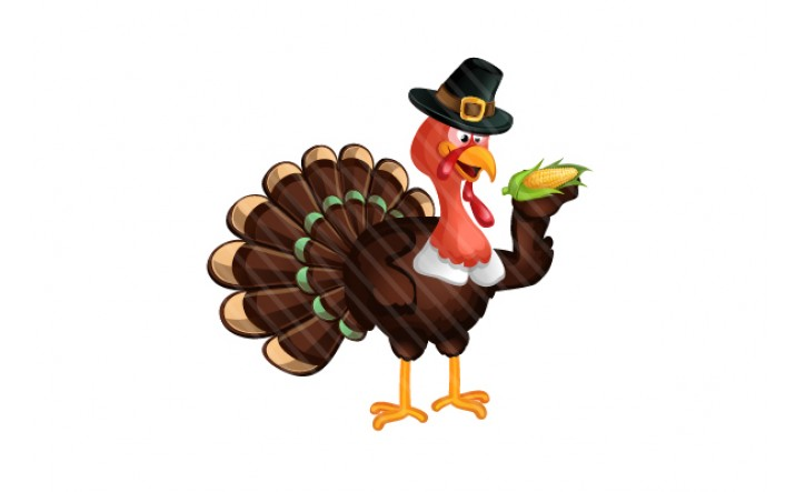 Thanksgiving Vector Turkey Graphics